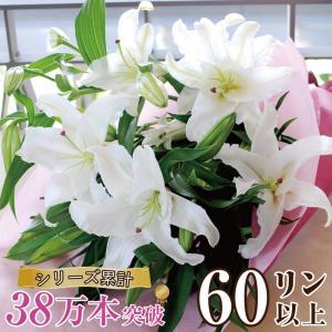 花束ギフト フラワーギフト 白ユリの花束60輪   誕生日 ゆり 百合 翌日配達|flower