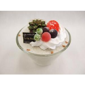 ケーキサボテン アラモード|flowerelegance