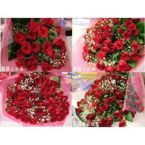 年齢の数だけ・バラの花束・赤バラ・特別価格・1本...の商品画像