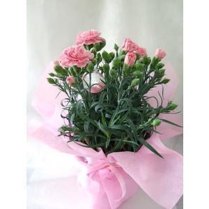 年齢の数だけ・バラの花束・赤バラ・特別価格・1...の詳細画像1