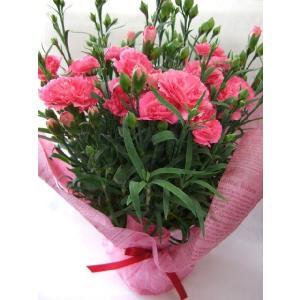 母の日の贈り物|flowerelegance
