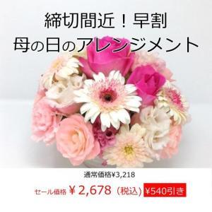 早割母の日フラワーアレンジメント 送料無料 季節のお花たっぷ...