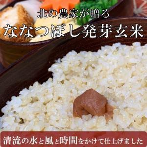 北海道の発芽玄米 無洗米 残留農薬不検出 2kg 基本送料込
