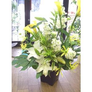 フラワーギフト・アレンジメント【お盆・お供え・法事】|flowerliberte