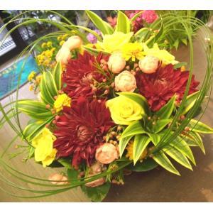 フラワーギフト・アレンジメント【誕生日・記念日・お祝い】|flowerliberte