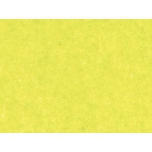 HEIKO IP薄葉紙 NONWAX ピスタチオ ラッピングペーパー 760x500mm 50枚入 flowernana
