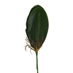 プレゼント 花 ギフト 造花 造花 オーキッドリーフ 葉5枚-束 胡蝶蘭の葉 leaf フラワー|flowernana