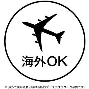 コイズミ ヘアドライヤー タイニー 海外対応 ブラック KDD-0016/K|flvffymene
