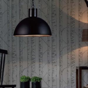 IKELAND PENDANT LIGHT (イケランド ペンダント ライト) 【送料無料】 【ポイント10倍】|flyers