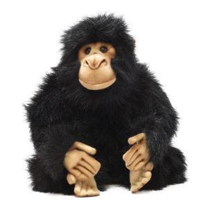 HANSA CHIMPANZEE MINI (ハンサ チンパンジー ミニ)|flyers