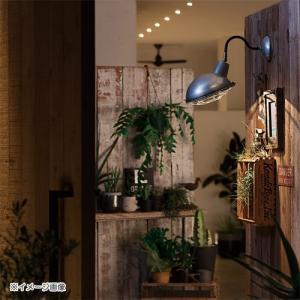 JAIL WALL LIGHT (ジェイル ウォール ライト) AW-0478 【送料無料】 【ポイント10倍】|flyers|02