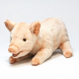 ■ HANSA PIG (ハンサ ブタ)|flyers