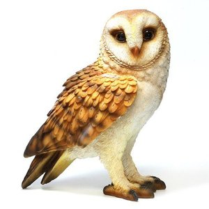 PET BANK BARN OWL (ペット バンク メンフクロウ)|flyers