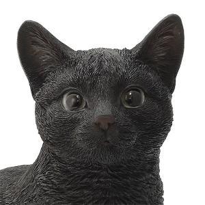 ■ PET BANK CAT SIT BLACK (ペット バンク キャット シット ブラック)|flyers|02