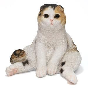 PET BANK CAT SCOTTISH FOLD (ペット バンク キャット スコティッシュ フォールド)|flyers
