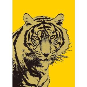 TIGER POSTER (タイガー ポスター) flyers