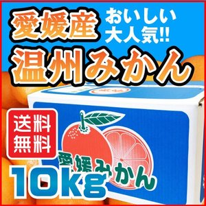 温州 みかん 10kg 愛媛県産 送料無料 規格外 訳あり 安い 自宅用 (M2)|fmarushe535