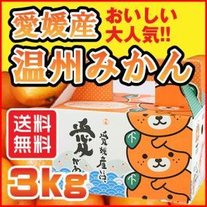 温州 みかん 3kg 愛媛県産 送料無料 規格外 訳あり 安い 自宅用 (M2)|fmarushe535
