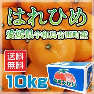 はれひめ 愛媛県 宇和島市 吉田町産  サイズ無選別 送料無料 10kg|fmarushe535