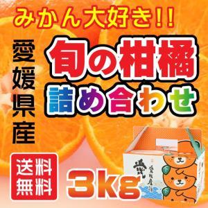 みかん大好き!旬の柑橘詰め合わせ 3kg 愛媛県産ミカン|fmarushe535