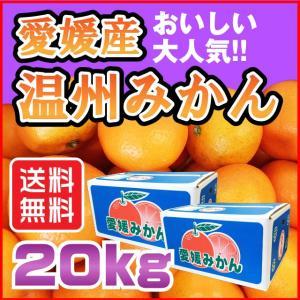 温州 みかん 20kg 愛媛県産 送料無料 規格外 訳あり 安い 自宅用 (M2)|fmarushe535