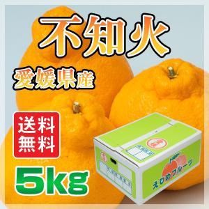 愛媛県産 不知火 5kg しらぬい(デコポンと 同品種 ) 柑橘 送料無料 手で剥いて食べられる 特価  規格外 (M2)|fmarushe535