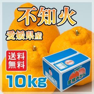 愛媛県産 不知火 10kg しらぬい(デコポンと 同品種 ) 柑橘 送料無料 手で剥いて食べられる 特価  規格外 (M2)|fmarushe535