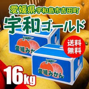 宇和ゴールド 16kg(別名 河内晩柑・みしょう柑)果汁たっぷり 愛媛県 宇和島市 吉田町産  送料無料 特価 訳あり (M2)|fmarushe535