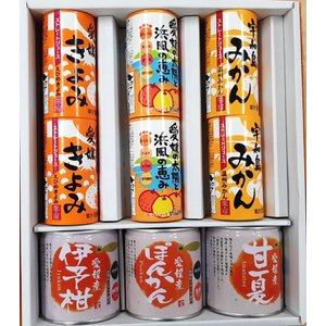 愛媛県ジュース6本柑橘のシラップ漬け3缶セット|fmarushe535