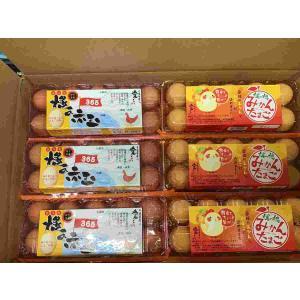 みかん卵×ひうちの卵|fmarushe535