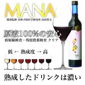 酵素 ドリンク ダイエット マナ MANA酵素 500ml×2本 デトックス 3日ファスティングセット ファスティング 飲料 断食|fmft|02