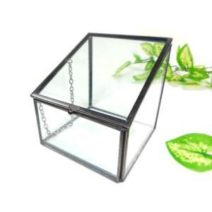ガラスケース S コレクションボックス 小物入れ 収納ケース テラリウム あすつく|fnetscom