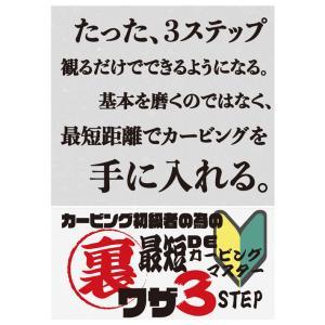 カービング初級者の為の最短DEカービングマスター HOW TO DVD オガサカライダー 越博&中本...