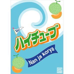 サーフィン DVD [ハイチューブ VOL.2 Nan ja korya] ハイチューブ 2 ナンジャコリャ SURF