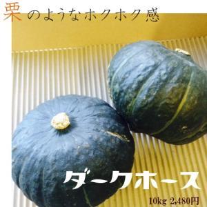 北海道産かぼちゃ「ダークホース」(約10kg)
