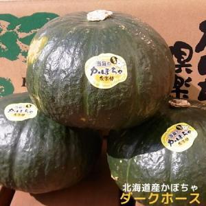北海道産かぼちゃ「ダークホース」(約10kg) food-link 02