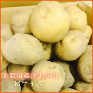 【今だけ】訳あり北海道産北あかり(10 kg)|food-link|03