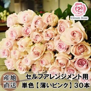 セルフアレンジメント用 バラ 【 ベージュピンク 】 淡いピンク 薄いピンク 単色 30本 薔薇 生花 切花 新鮮なバラを産地直送 ドリームローズ food-sinkaitekiya