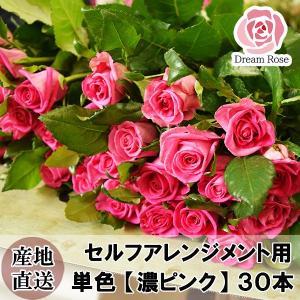 バラ 薔薇 生花 セルフアレンジメント用 バラ 【 濃いピンク 】 単色 30本 ダークピンク 切花 新鮮なバラを産地直送 ドリームローズ food-sinkaitekiya