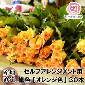 セルフアレンジメント用 バラ 【 オレンジ色 】 橙色 単色 30本 薔薇 生花 切花 新鮮なバラを産地直送 ドリームローズ food-sinkaitekiya