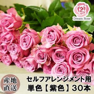 セルフアレンジメント用 バラ 【 パープル 紫色 】 単色 30本 薔薇 生花 切花 新鮮なバラを産地直送 ドリームローズ food-sinkaitekiya