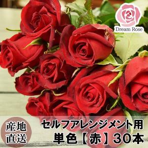 薔薇 バラ 生花 セルフアレンジメント用 バラ 【 赤 】 単色 30本 切花 新鮮なバラを産地直送 ドリームローズ food-sinkaitekiya