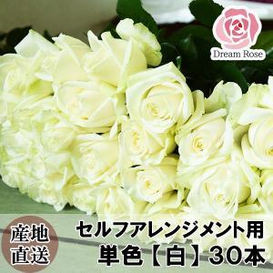 薔薇 バラ 生花 セルフアレンジメント用 バラ 【 白 】 単色 30本 切花 新鮮なバラを産地直送 ドリームローズ food-sinkaitekiya