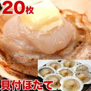(帆立 ホタテ 貝 BBQ バーベキュー)  ほたて片貝付き10枚で約450〜600g前後 ウロ取済み 冷凍