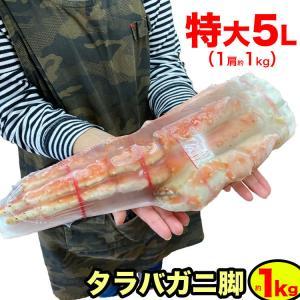 タラバガニ 特大 1kg 一級品 身入良好 訳あり 訳有 わけあり 折れ たし脚 たらばがに 蟹 カ...
