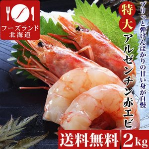 特大アルゼンチン赤エビ2kg えび 海老 蝦 お刺身