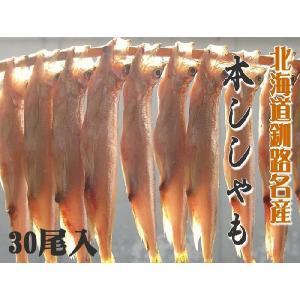 北海道釧路産  天日干し  本ししゃも 子持ち メス 40尾入|foodwave