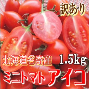 早期予約受付中!北海道名寄産 訳ありミニトマト「アイコ」バラ詰め 約1.5kg foodwave
