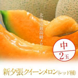 北海道最高級メロン 新夕張クイーンメロン(レッド種) 中2玉|foodwave