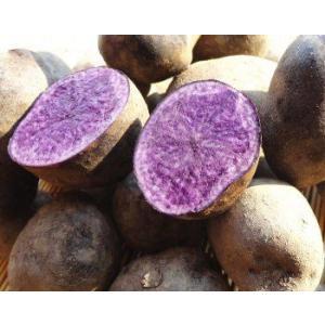 送料無料/紫色のジャガイモ 北海道産シャドークィーン5kg foodwave